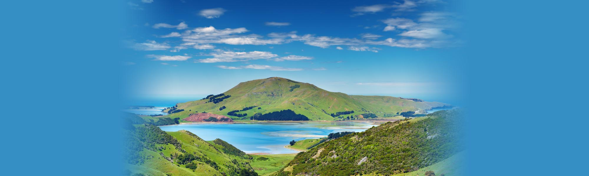 Teach English in New Zealand