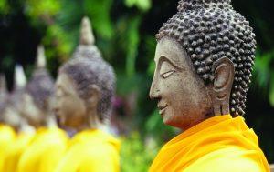 buddha culture