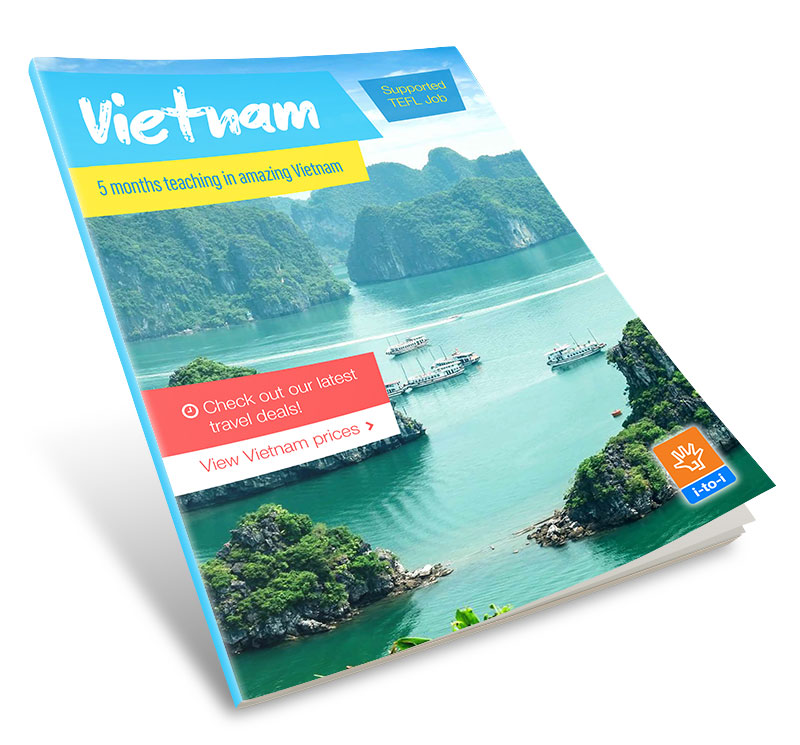 supported job vietnam guide