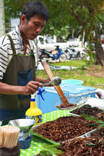A street seller prepares fried cockroaches, a popular delicacy in Thailand