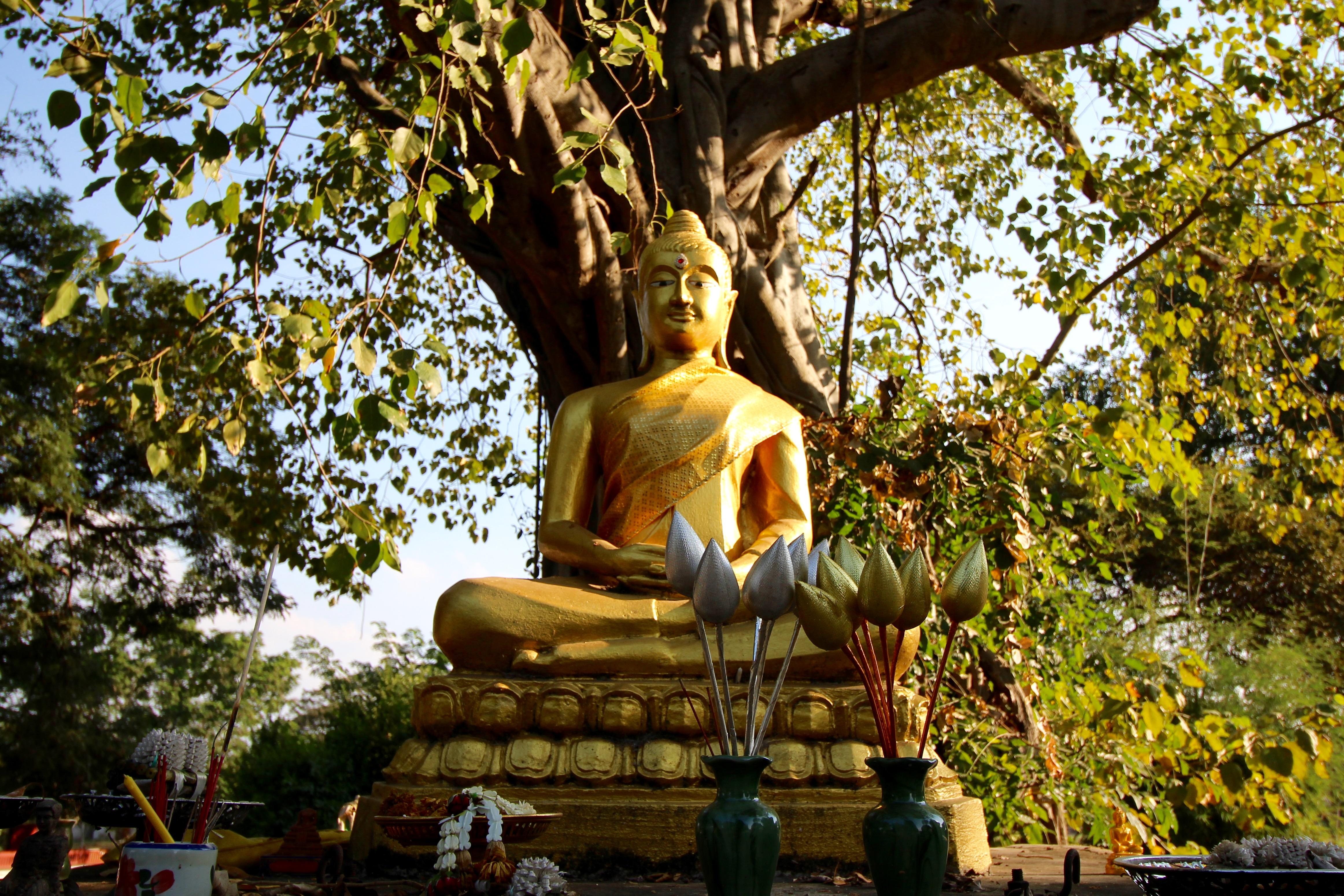 A buddha statue in Ayutthaya, Thailand
