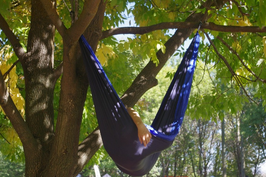 Hammock hanging between branches of a tree
