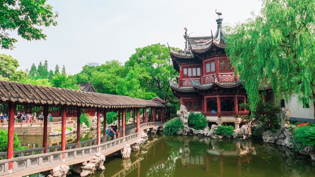 Find some trees in Yuyuan Gardens