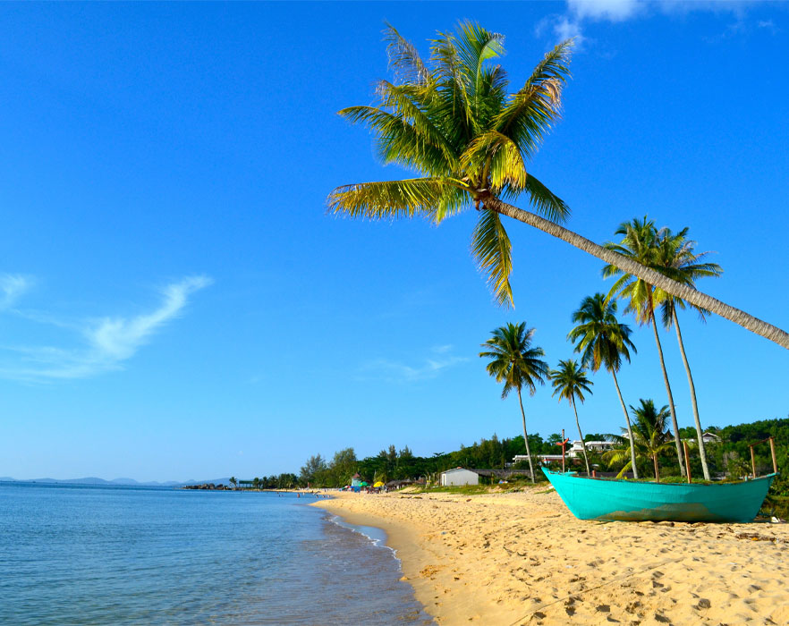 boat and palm trees on a beach