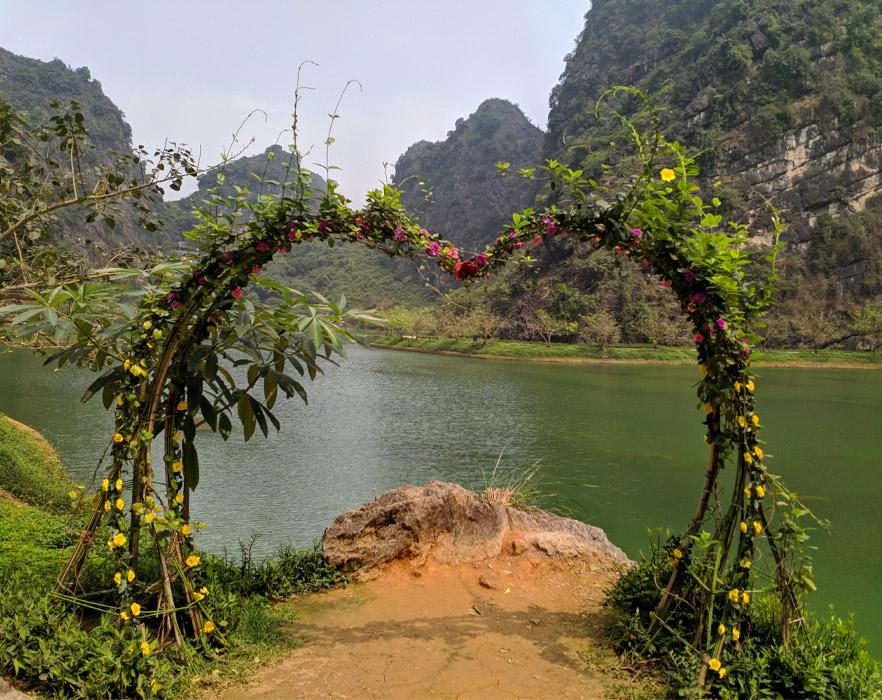 Roses in Ninh Binh