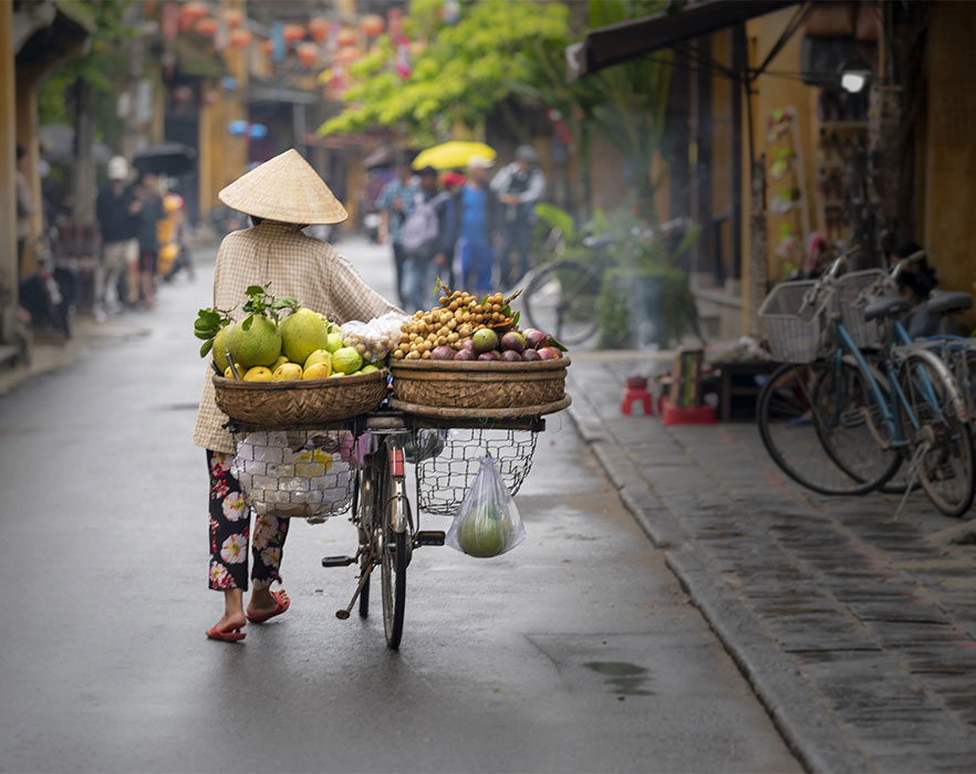 Woman walking with bike full of fruit - Hanoi, Vietnam