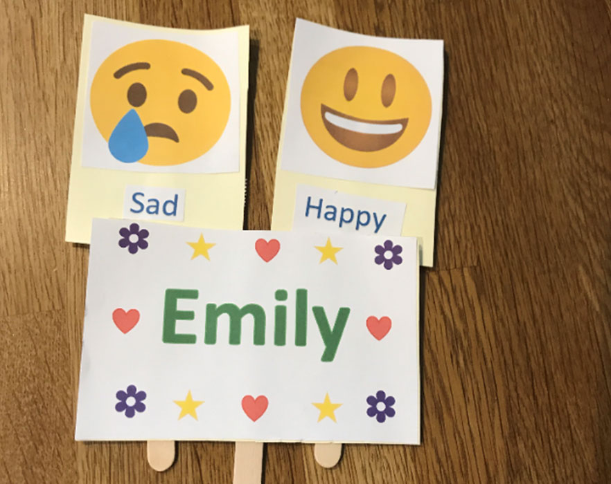 Emily's flash cards