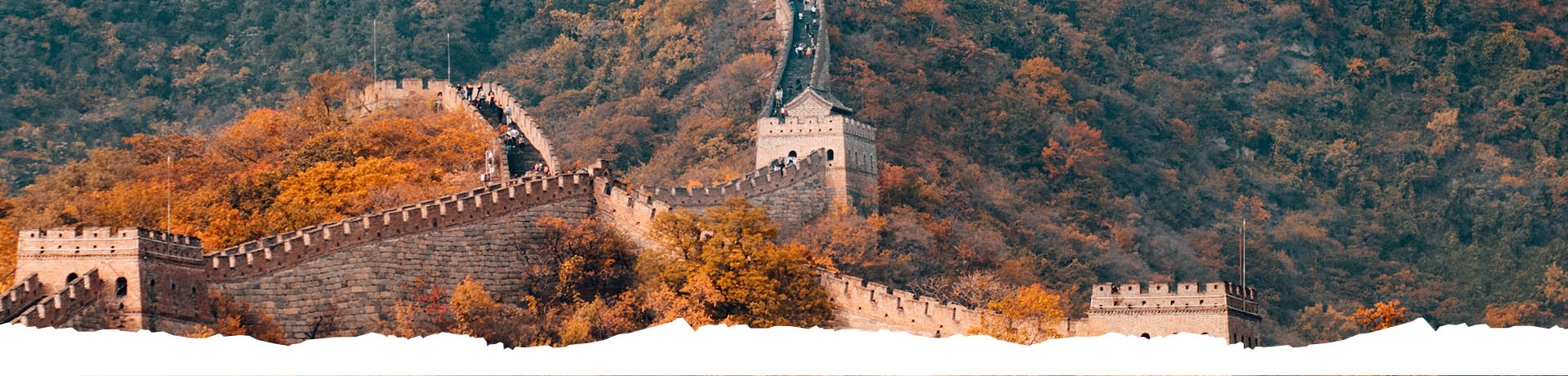 TEFL Courses in China