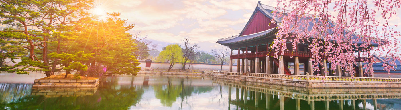 Lake with building and blossom tree in South Korea